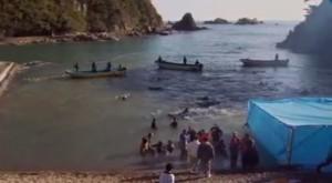 """""""The Cove"""", el premiado documental que muestra matanza de delfines en Japón"""