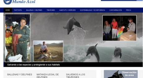 Perú: ONG destapa matanza de delfines y gobierno anuncia investigación