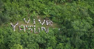 Ecuador: Asamblea Nacional autoriza la explotación de petróleo en Reserva Natural Yasuní