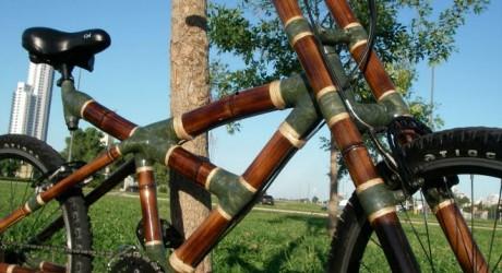 ONU premia bicicletas de bambú de ghanesas y a guatemaltecas que plantan árboles