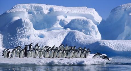 Un muy mal día para la Antártica