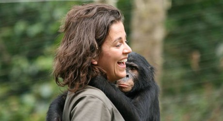 Historias en video: la chilena que estudia los bonobos en el Congo