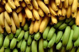 Un hongo amenaza la producción mundial de plátano