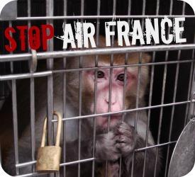 Air France en la mira de los activistas
