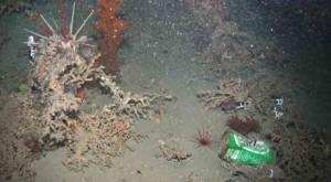 Vertederos submarinos, la basura plástica de las profundidades