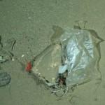 Plástico a 2.500 de profundad.