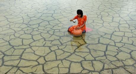 Mejores fotografías medioambientales 2014