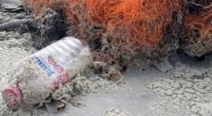 """ONU le pone precio a los costos de la """"huella de plástico"""" en los océanos"""