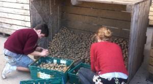 Particular café inglés: ofrece comida descartada y se paga con tiempo, trabajo o dinero