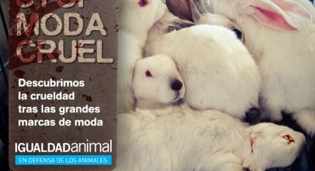 No a la moda cruel, no a la piel de conejos