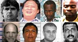 Interpol lanza lista de los 9 más buscados por delitos ambientales