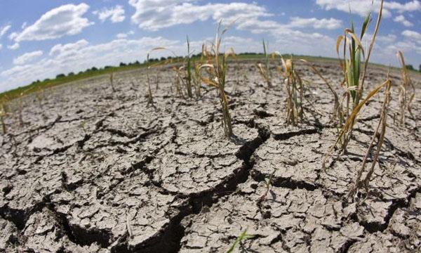 Escasez hídrica en Brasil y Chile: la sequía ya está aquí