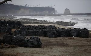 En bolsas negras se ha ido dejando la tierra y los residuos  extraídos durante las labores de descontaminación, en una zona de 16 kms2. Estas bolsas figuran en una playa cercana a Fukushima.