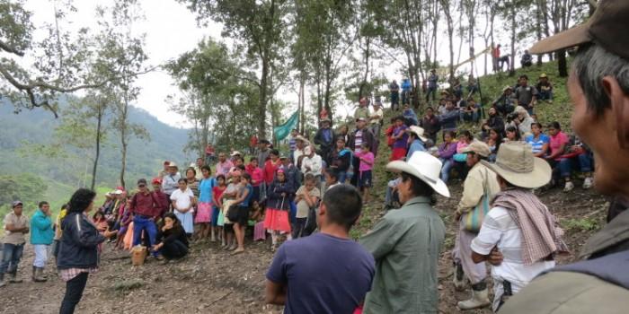 Las causas de los eco-héroes 2015