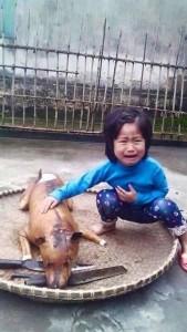 La impactante imagen de la niña que encontró a su mascota perdida, asada en una parrilla, antecedió a la campaña iniciada por estos días en Vietrnam.